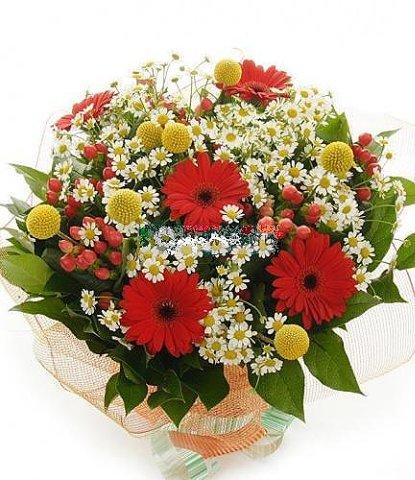 Купить цветы и букеты комнатное растение в подарок мужчине