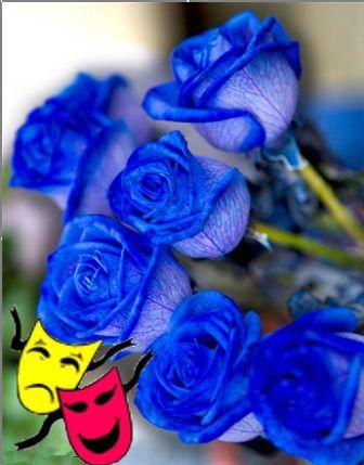 Синие розы полная информация синие