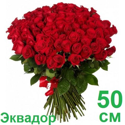 Доставка цветов круглосуточно николина гора заказ цветов по г.королёв круглосуточно
