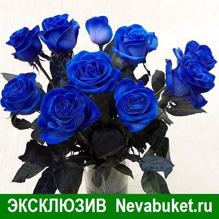синие обои сонник