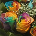 радужные розы, купить радужные розы